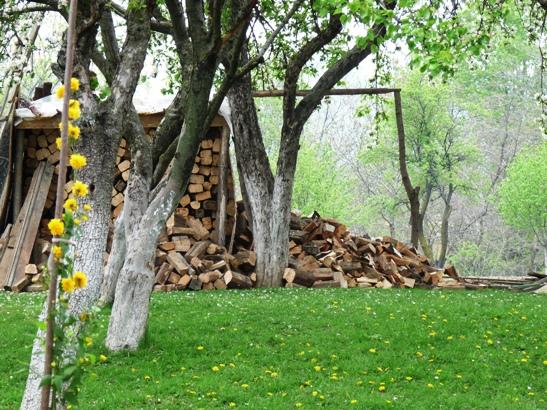curte-cu-lemne1