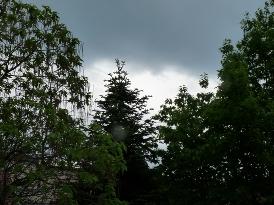 nori peste Sokadalom