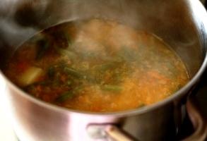 ceapa, morcov, ardei gras, cartofi, fasole verde si supa de carne